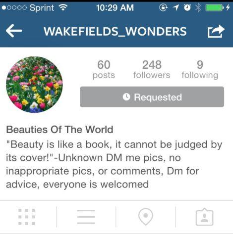 The Wonderful World of @Wakefields_Wonders