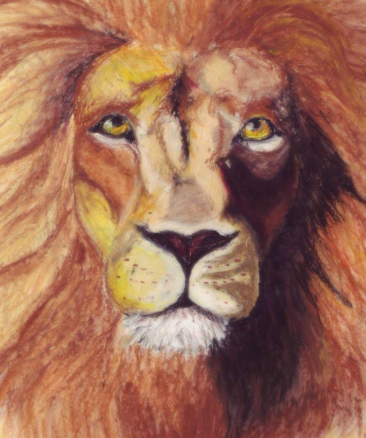 Mflame wa msitu (King of the Jungle)