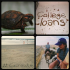 Turtle in Brazil by Lucas, College loans public word art by Lauren, Camel ride in Isreal by Madie, and Fun at the Jersey shore by Rachel.
