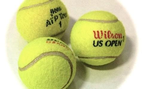 2013 ATP Tennis Season Recap
