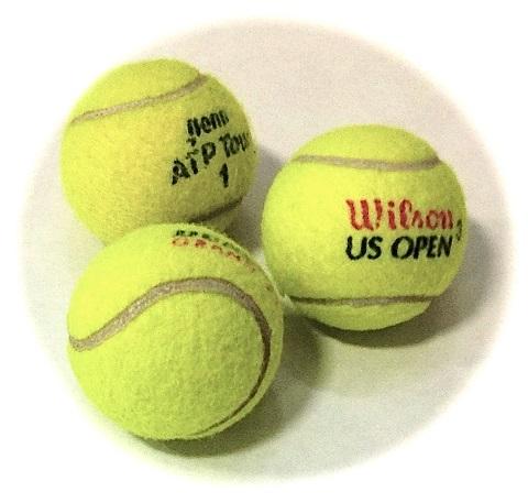 The 2013 ATP Tennis season draws to a close.