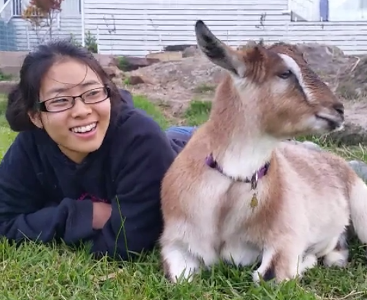 This year was unfor-GOAT-able!