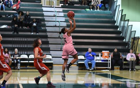 Sophomore Kayla Gillums shoots a lay-up.