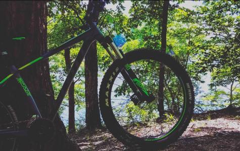 Mountain Biking: The Ultimate Thrill!