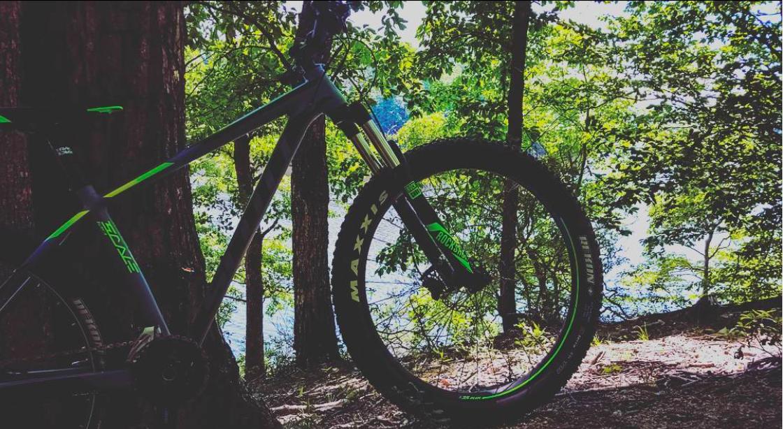 Mountain Biking at Fountainhead Regional Park