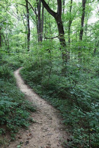 Top 5 Hiking Trails within 5 miles of Wakefield