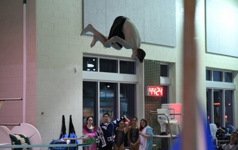 Swim and Dive: The Most Exciting, Ignored Sport at Wakefield