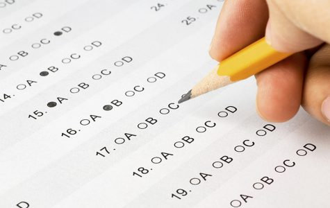 Standardized Tests: What Do They Measure?