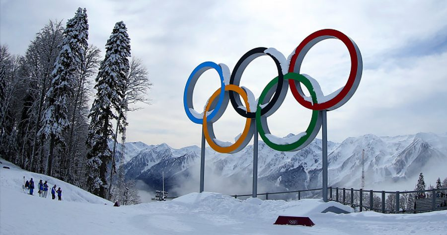 What You Might Have Missed During the Olympics
