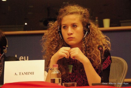 Tamimi Accepts a Plea: 8 Months for a Slap