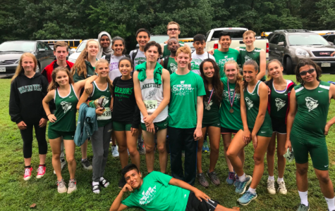 Cross Country Competes at Top Form