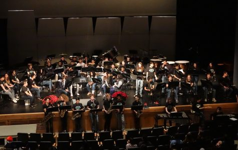 A picture from our Winter Concert series.
