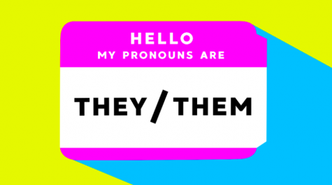 A Guide to Pronouns: They/Them