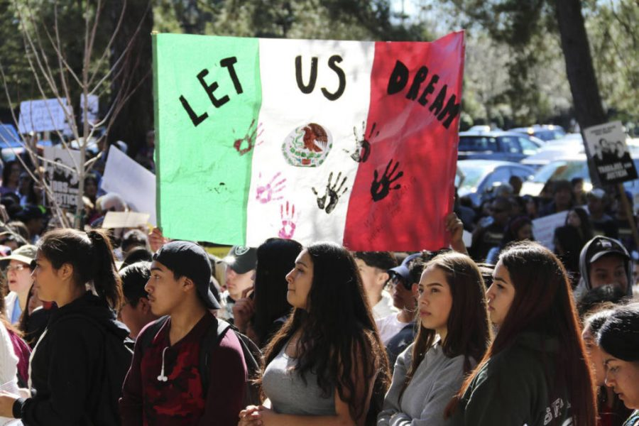 Undocumented Immigrants Dream Again: Judge Rules DACA Must Accept New Applicants